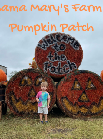 Mama Mary's Farm & Pumpkin Patch