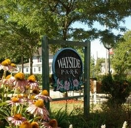 Woodland Design is in the process of preparing a Site Assessment and Plan of Wayside Park in Waymart, PA.