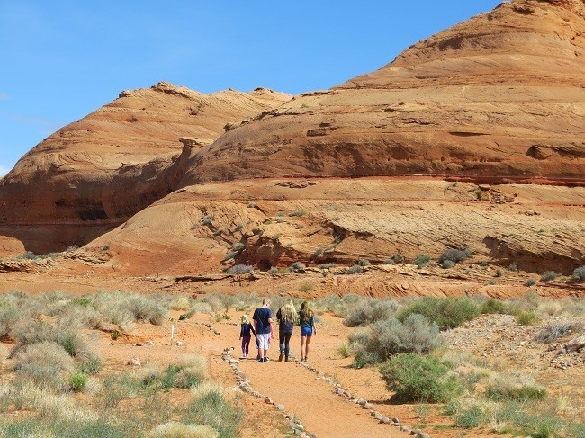 We go for a walk in the dessert to see some ferns
