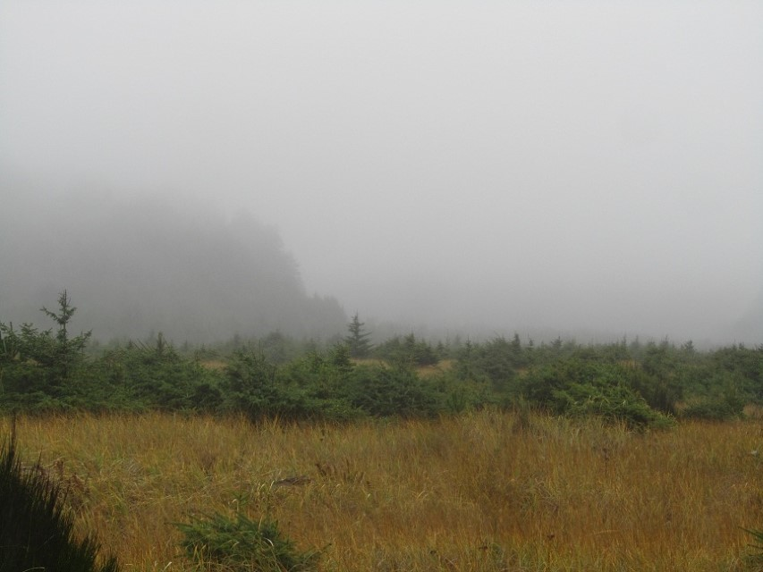 Out in the middle of nowhere on this trail, we look to the south, and see a fog engulfed hill. (This global cooling sure is wet)