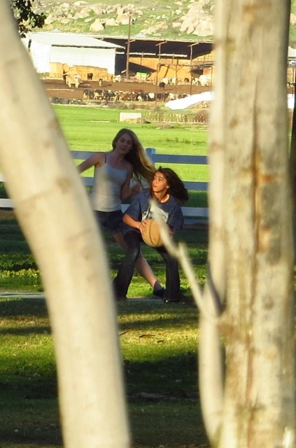 Holly is out playing ball with some people she found here at the park. Whats not to like about California?