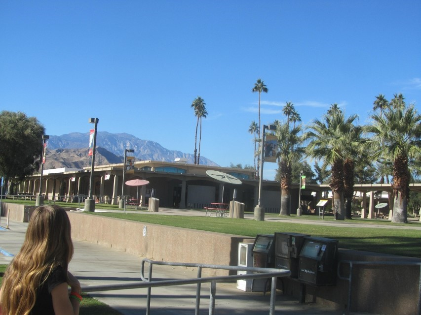 Palm Desert community college is covered in grass, and palm trees. This is a true Oasis if we ever saw one.