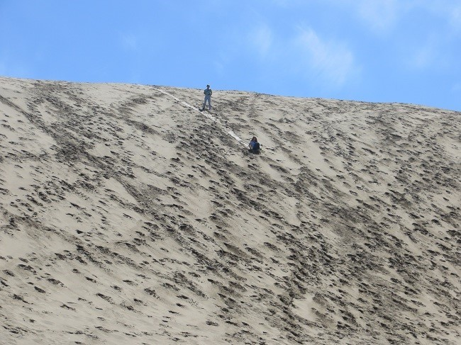 And what a way to do it. Just down the hill from the RV on the beach dune below one can really go. Who says you need snow? I wonder if she was texting John?