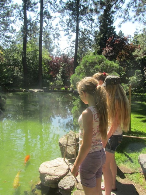 I love the Japanese Garden. The ponds and Koi are really cool