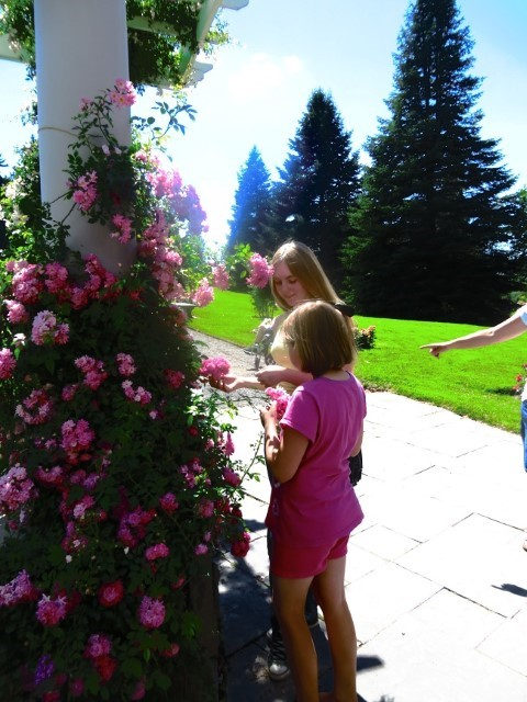 The rose Garden pales compared to my Moms garden, but the girls bring beauty and life to this park.