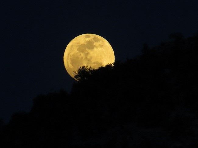 We are finally back in our moon lit camp, and another day is spent. Have a good evening and a good night…
