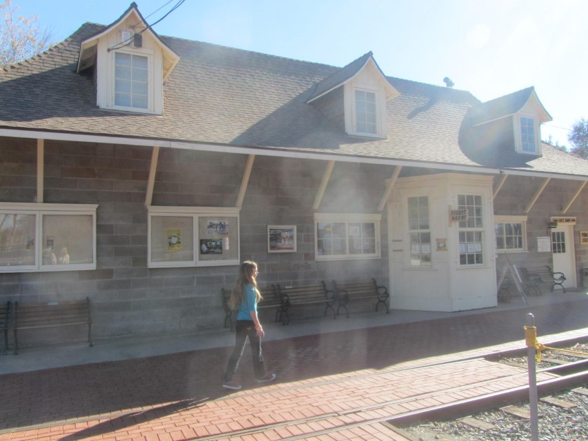 Little gift shop / train depot sells books, ice cream, and train tickets to support the railroad museum.