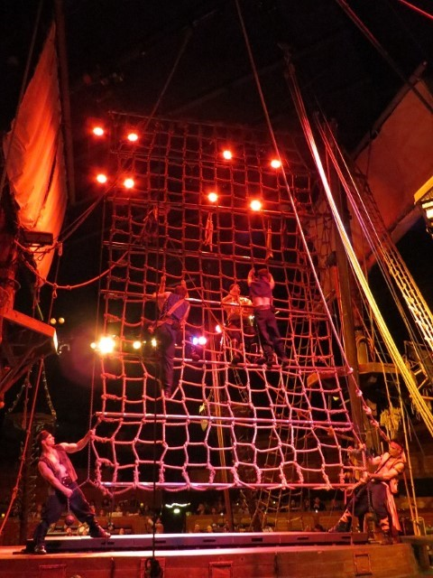 They did a great deal of jumping, climbing, fighting and flying, just as any good pirate would do.