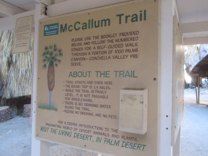 Here is the trail to the oasis. The sign says it is 1.4 miles round trip to the oasis, double