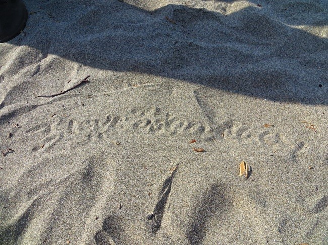 I found the hand writing in the sand. I am not sure what it says though. I know it is important, and possibly leading up to something scary.