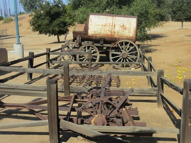 Some old equipment used to keep the groves tidy.  I wonder how they kept horses from eating the oranges while working.
