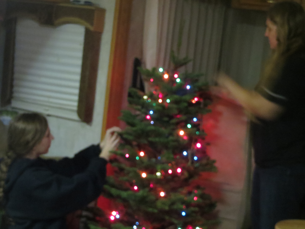 Decorating our Tree