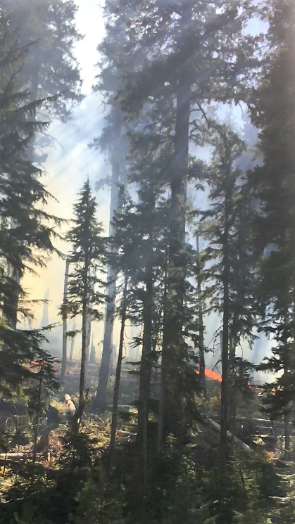 Fire burning on hwy 22