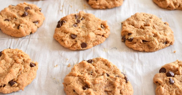 Grain Free Peanut Butter Chocolate Chip Cookies
