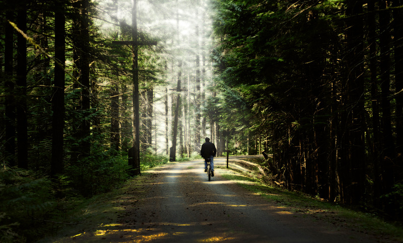 How What I Learned at Camp Set My Path Forward