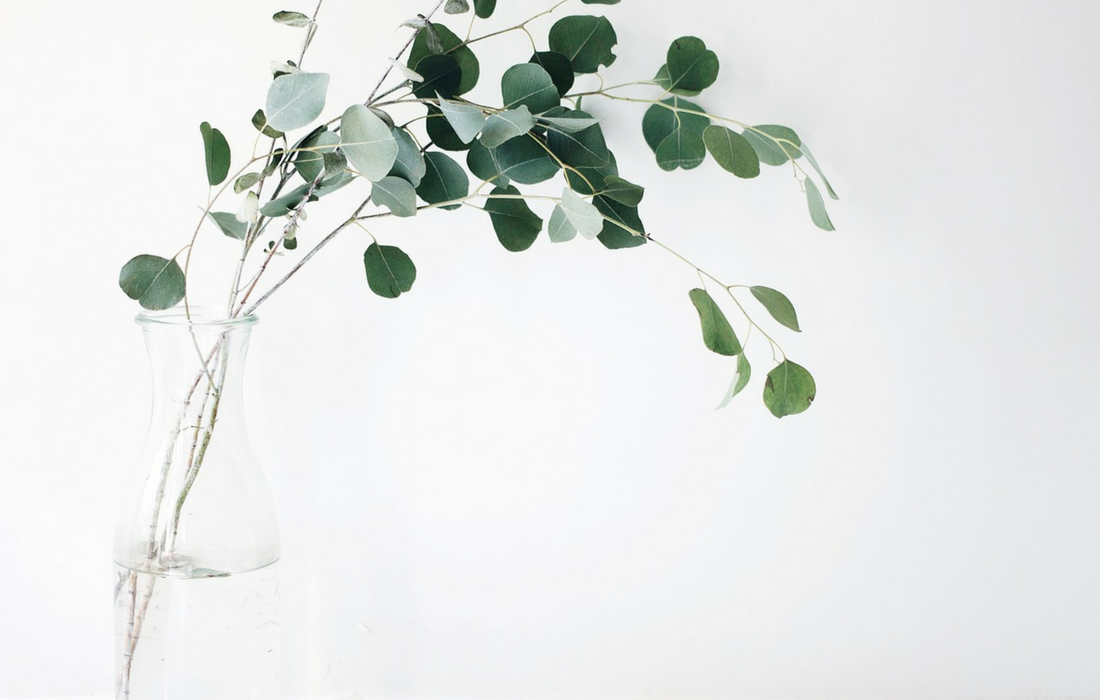 Take the thirty day minimalism challenge to simplify your life.