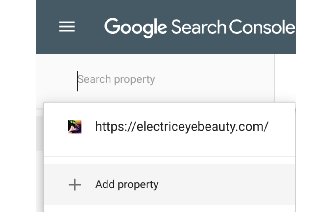 Click the add property option to add the additional website URL'S.