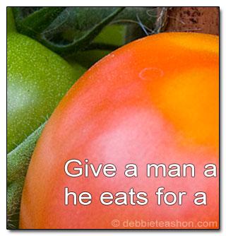 Teach Tomato