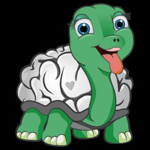 Turtle Logo Square
