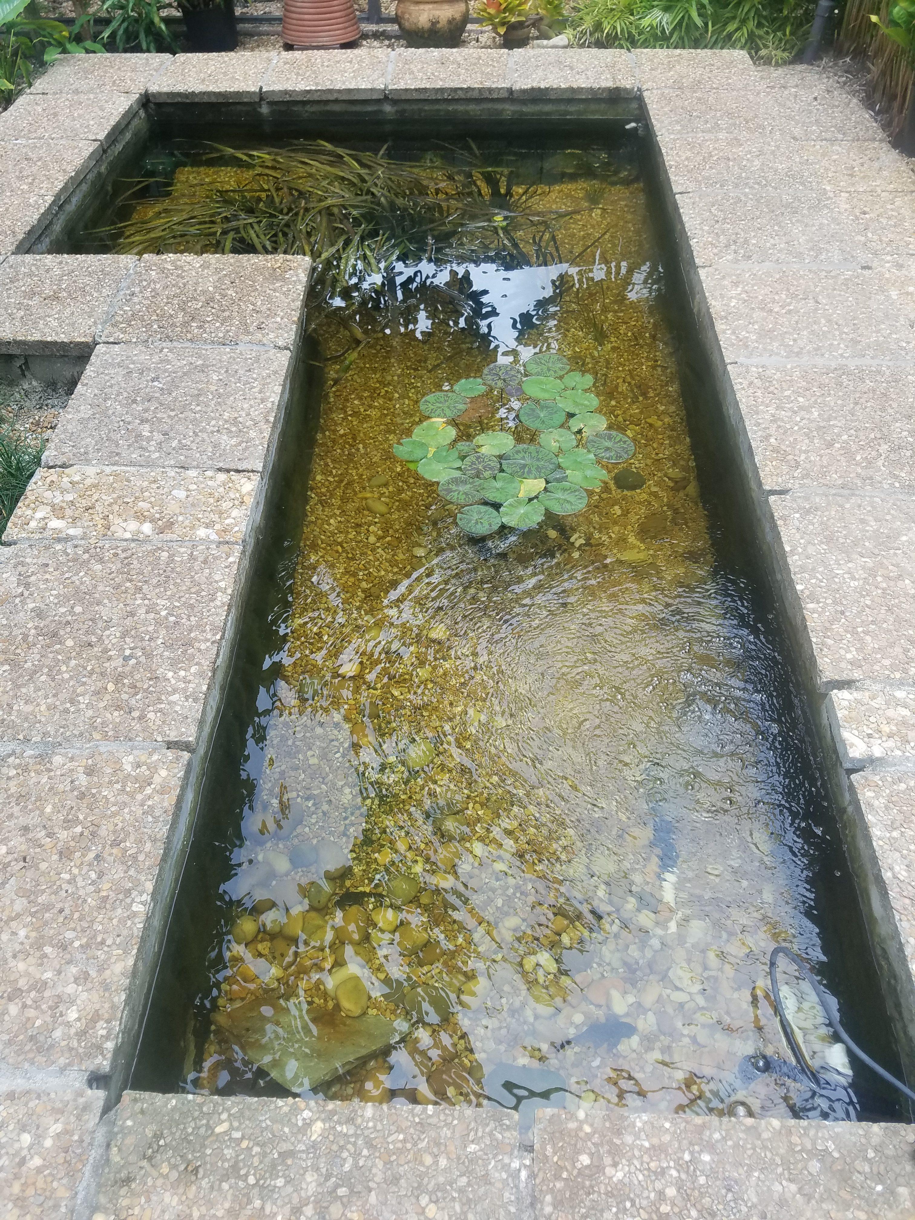 Miami pond maintenance