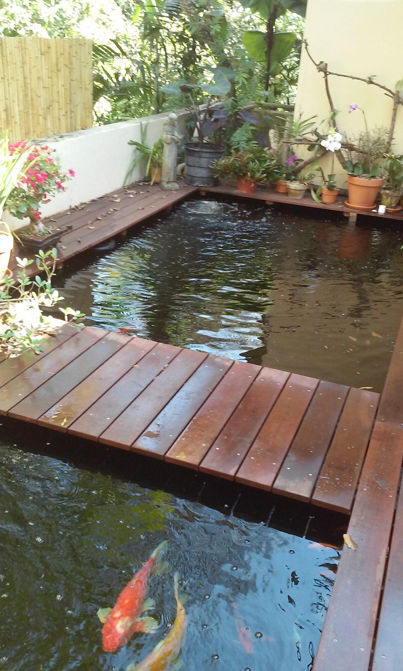 Miami pond designers
