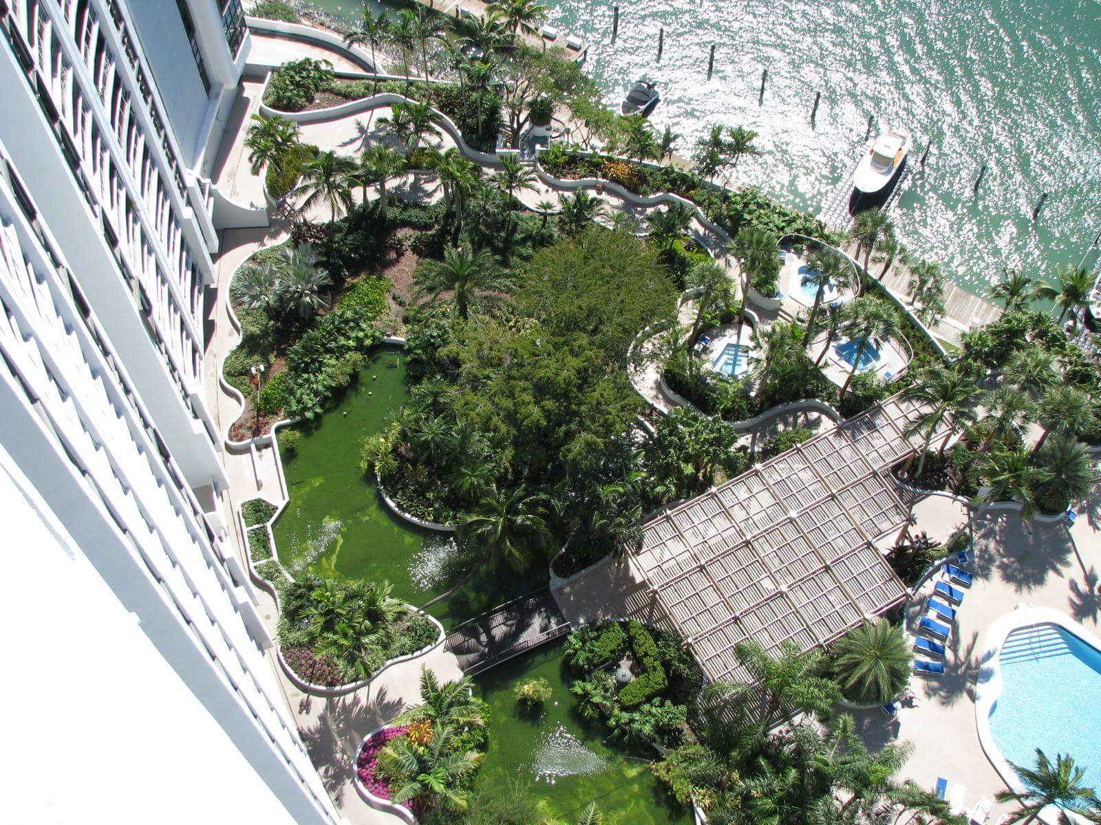 Miami pond gallery