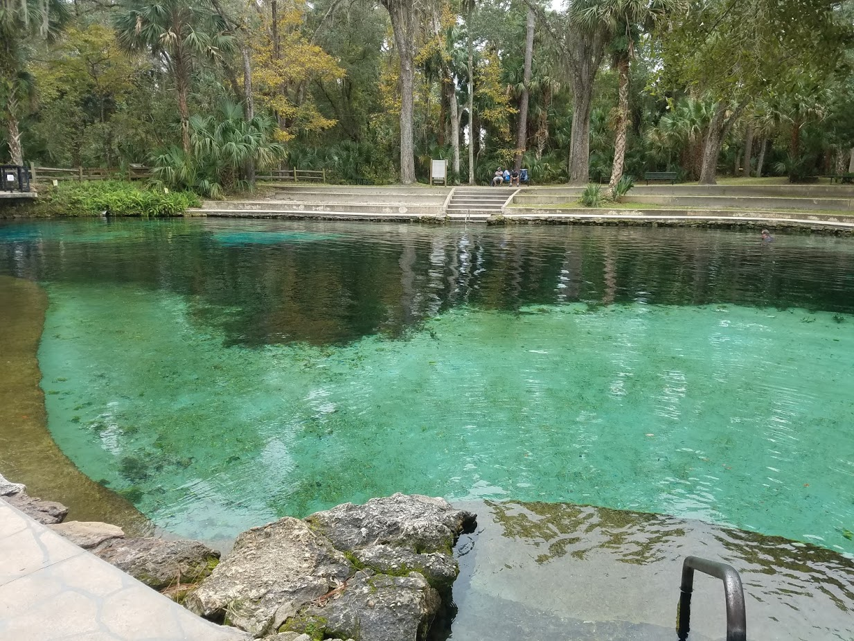 Pond Design Inspiration
