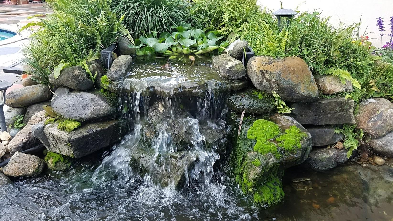 Waterfall by Pond Alchemy