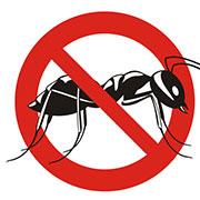 ant exterminator independence, mo