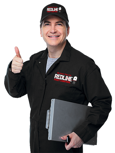 The Top Pest Control Provide in Independence, MO - Redline Pest Control