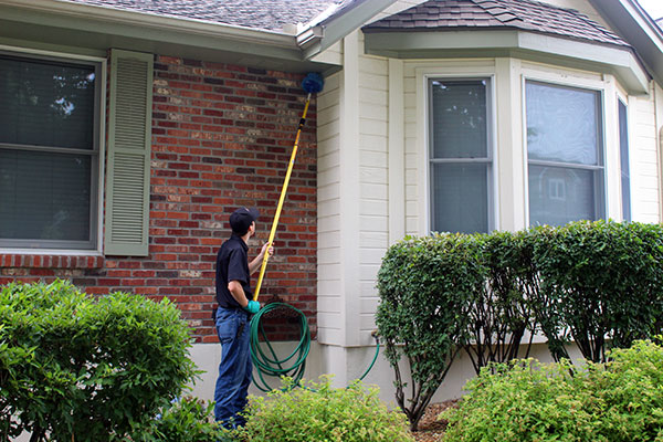 Protect your home from pests with Redline Pest control