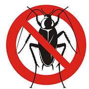 roaches exterminator independence, mo