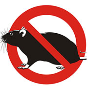 rodent exterminator independence, mo