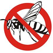 wasp exterminator independence, mo