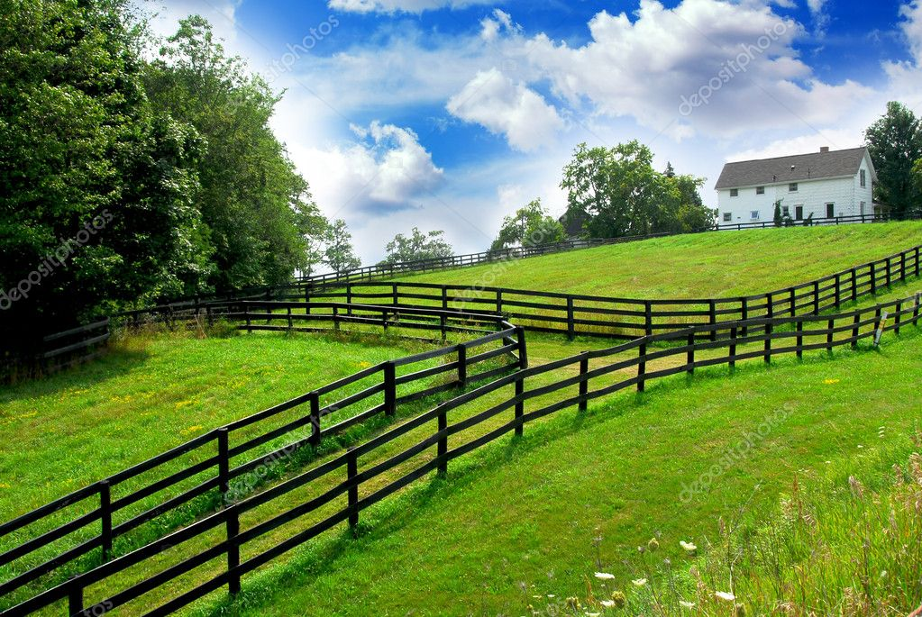 Farm and Agricultural Fence