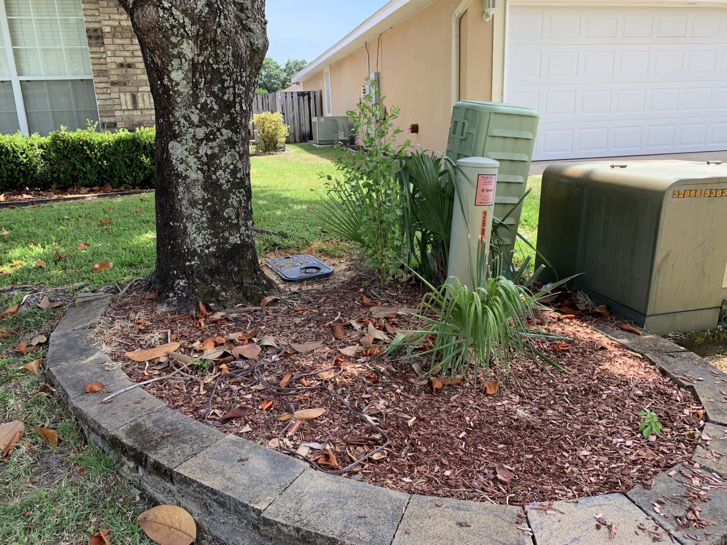 Tree Care For Hurricane Preparation