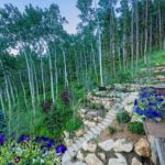 Vail-Mountain-Elegant-landscape-rennovation