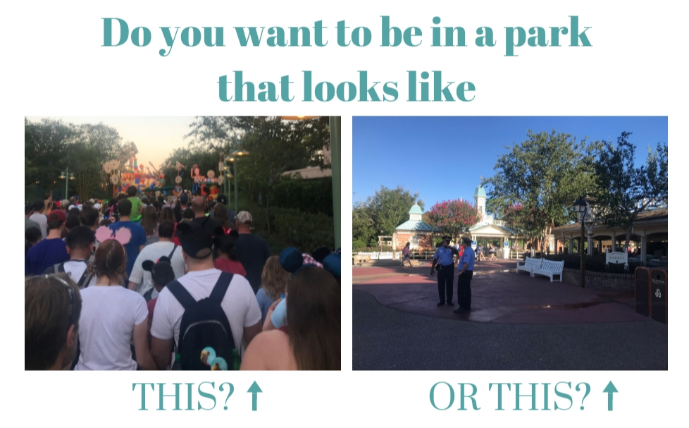 Authorized Disney vacation planner Alison Chambers of Neverland Adventure Guides shares inspiration for fantastic adventures on her Lend Me Your Mouse Ears blog.