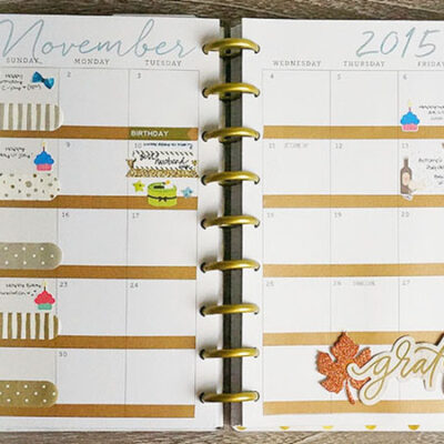 Plan With Me November '15 & Week 45