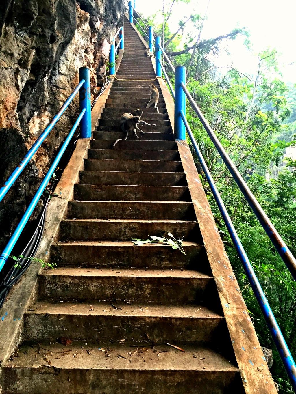 tiger cave thailand