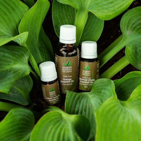 Essential Oils in 3 sizes