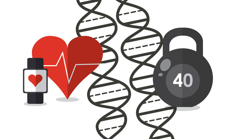 What is the Right Diet and Exercise for Weight Loss? Let Your DNA Decide