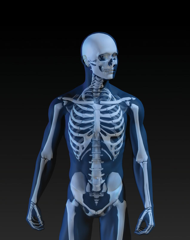 Keeping Your Bones Healthy for Life