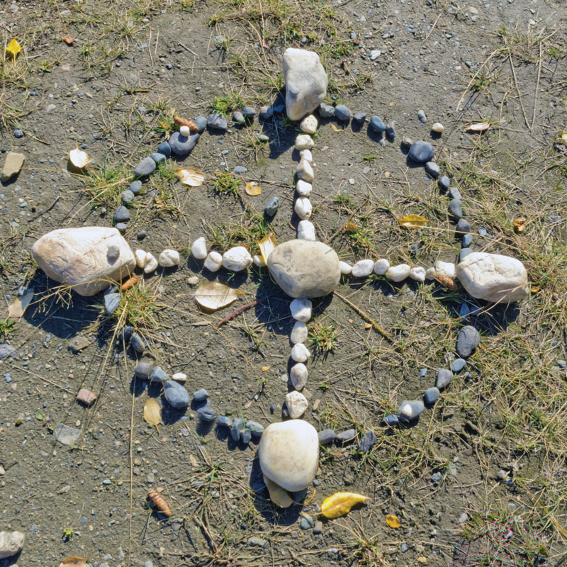 Find Your Direction in Life with the Medicine Wheel