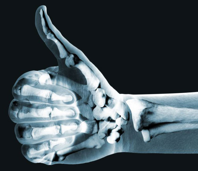 How To Boost Your Bone Strength While Building A Better Body