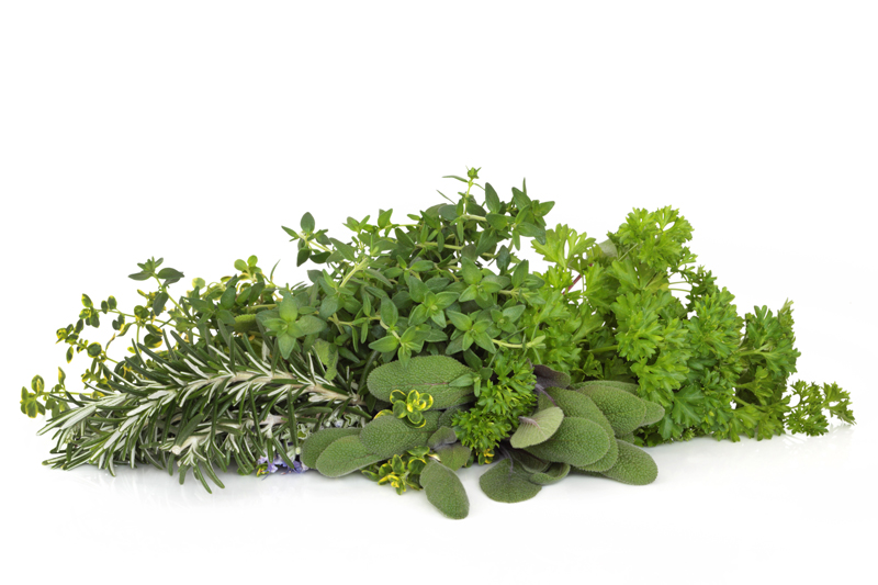 Repair Damaged Soft Tissues with Topical Herbs
