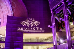 emerald-tolu-wedding-reception-perfect-planning-events-ronald-reagan-bldg-joshua-dwain-photography-12