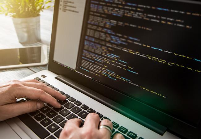 Customization and Script Development