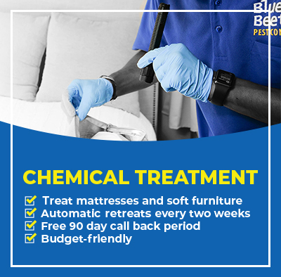 Bed bug chemical treatment mobile banner