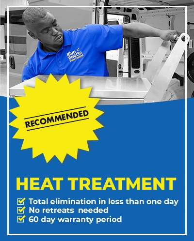 Bed bug heat treatment mobile banner